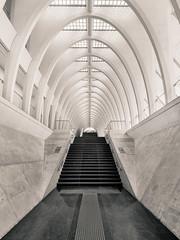 Inverse Radiology (oscar lsz) Tags: interior stairs architecture calatrava liege guillemins perspective