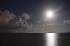 Dreamscape (andrew.290) Tags: wynnum foreshore night moon clouds