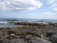 TRS hotels, Yucatan (Liti Haramaty) Tags: mexico riviera maya 2018 vacation beach yucatan trs rocks