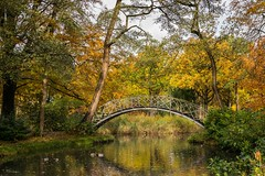 Autumn colours (Mariannevanderwesten) Tags: autumn herfst autumncolours herfstkleuren brug bridge nikon nature natuur bomen