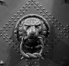 ''You talkin' to me?'' (ettigirbs2012) Tags: cofo42cott door dresde lion metal monochrome night nuit porte cof042dmnq