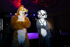 DSC09010 (Kory / Leo Nardo) Tags: pacanthro pawcon paw con pac anthro convention fur furry fursuit suiting mascot sona fursona san jose doubletree hotel california dance party deck animals costuming pupleo 2018