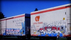 (timetomakethepasta) Tags: rague h2o mul cool hand 28 skizm htk freight train graffiti art cryo cryotrans reefer cryx coolhand
