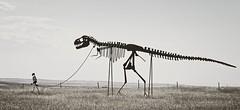 Walk the Dinosaur (yellocoyote) Tags: black white monochrome bw dinosaur walk leash sculpture art piece plains prairie south dakota sd united states america usa attraction roadside trex tyrannosaurus rex pet
