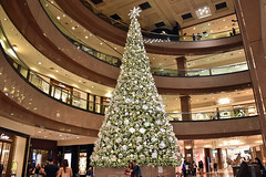 Xmas Tree (chooyutshing) Tags: xmastree decorations lightedup display attractions christmasfestival2018 ngeeanncity orchardroad singapore
