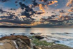 Sunrise Seascape with Clouds (Merrillie) Tags: daybreak sunrise cumulus nature dawn coast water morning sea newsouthwales rocks pearlbeach nsw rocky waterscape ocean earlymorning landscape waves coastal clouds outdoors seascape australia centralcoast sky seaside