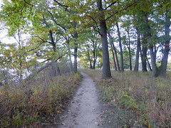 Trail (WabbitWanderer) Tags: cootesparadise cootes conservation wilderness hamilton ontario princesspoint trail autumn