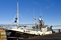 H347 Ocean Dawn - Fraserburgh Harbour - Aberdeenshire Scotland - 13/11/2018 (DanoAberdeen) Tags: danoaberdeen danophotography fraserburghscotland fraserburgh aberdeenscotland aberdeenshire trawlers trawlermen fishingtrawlers scottishtrawlers salmon haddock cod shellfish workboats tug northsea 2018 candid amateur autumn summer winter spring fraserburghharbour fish fishing fishingtown fishingport seafarers maritime whitefish whitefishport creels broch thebroch shipspotting shipspotters fishingboat northeast northeastscotland ship boat harbour lifeatsea shipbuilding marine northseafishing northseatrawlers h347 oceandawn shellfishport pelagic burgh faithlie fishmarket