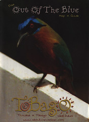 Tobago Map & Guide; 2000_1, Trinidad & Tobago (World Travel Library - The Collection) Tags: trinidadandtobago tobago map karte plan carte 2000 caribbean island bird fauna travelbrochurefrontcover frontcover world library center worldtravellib the collection holidays tourism trip vacation brochures brochure papers prospekt catalogue katalog photos photo photography picture image collectible collectors sammlung recueil collezione assortimento colección ads online gallery galeria touristik touristische documents dokument broschyr esite catálogo folheto folleto брошюра broşür