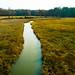 A River Runs Through It (AngelBeil) Tags: chesapeakebeachrailwaytrail dronestagram calvertcounty chesapeakebeach placestovisitfall