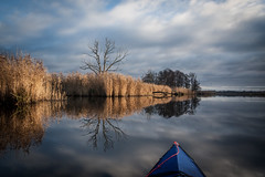 _MG_9960.jpg (qitsuk) Tags: reflection germany peene river mecklenburgvorpommern