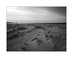 Black and white seascape at dusk (Franco & Lia) Tags: sea seascape paesaggio sardegna sardinia baiadellemimose sabbia sand dune dusk crepuscolo tramonto sunset biancoenero schwarzundweiss noiretblanc blackwhite samyang 12mm