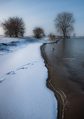 Painting without a frame (Ingeborg Ruyken) Tags: sneeuw 500pxs january empel orning instagram winter natuurfotografie januari ochtend flickr snow