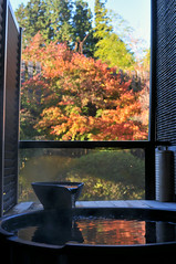 Nikkō (日光市) Town | Tochigi, Japan (Ping Timeout) Tags: nikkō 日光市 town city tochigi prefecture japan nikko north west season visit travel autumn fall outdoor 栃木県 unesco world heritage site nippon holiday 東京 日本 october 2018 vacation explore balcony private onsen hot bath spring natural water mountain okunoin hotel tokugawa ryokan traditional tradition accommodation japanese room small lodging reflect reflection relax enjoy sight fence river stream open air