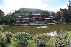 DSC_5788 (jptexphoto) Tags: valleyofthetemples theboydointemple kaneohe hawaii 12232018