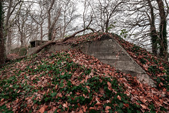 Bunker Birkhoven (Dannis van der Heiden) Tags: bunker german wwii tree second world war foliage sky concrete 608 amersfoort netherlands entrance nikond750 d750 tokina1628mmf28