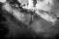 Sun, Shadows, Smoke and Steam (photofitzp) Tags: atmosphere bw black5 blackandwhite railways shadows smoke steam sun gcr loughborough 45305