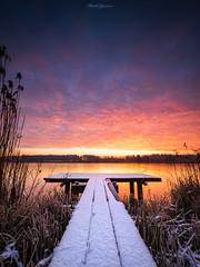 Winter Glory (Matt Rimkus Photography) Tags: schleswigholstein schnee sonnenaufgang sunrise jetty winter steg snow westensee deutschland de