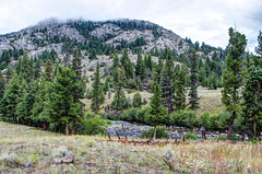 _DW27510_HDR.jpg (Upstate Dave) Tags: 2014 majorplaces hellroaringcreektrail riversandstreams mountains trails hellroaringmountain yellowstonenationalpark hellroaringcreek places yellowstone