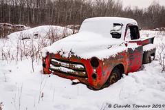 CT Boneyard-3 (Claude Tomaro) Tags: boneyard cardinal ontario canada claude tomaro meetup shutterbug classic car winter snow