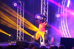 IMG_8993 (South Kitsune) Tags: fursuit furries furcon costumes cosplays caliur furry fandom