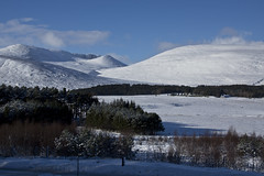 Snow in the Highlands (steve_whitmarsh) Tags: aberdeenshire scotland scottishhighlands highlands mountains hill winter snow trees landscape topic cairngorms