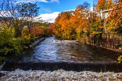 Butler NJ Foliage_4580 (smack53) Tags: smack53 fall fallseason fallcolors foliage autumn autumnseason autumncolors butler newjersey water river stream leaves trees brook creek nikon d100 nikond100