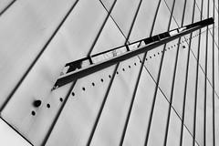 The way (arin.hakopian) Tags: museum berlin germany way blackwhite schwarzweis einfarbig monochrom monochrome mono jewish jüdischesmuseum canon eos70d deutschland
