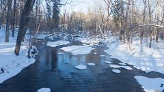 Hiver - Winter - Rivière du Berger,  Québec - Canada - 8320 (rivai56) Tags: hiver winter rivièreduberger québeccanada8320 parc de lescarpement bergerriver parkescarpement berger river park escarpement québeccity