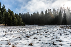 Snowfall (itsBryan) Tags: yosemite toyota tacoma sonyg sony sonyalpha sonya7r sonya7r2 sonya7rii fall snow hetchhetchy clouds carlzeiss canyons nationalpark nature norcal dynamicrange 1point4 park 2470mm 24mm 28mm 28point2 42megapxels 70200mm roadtrip offroad