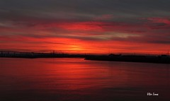 Mondego III (verridário) Tags: sun light low sunrise sony river mondego figueiradafoz manana nascerosol sol manhã water sky água litoral clouds nuages nuvens