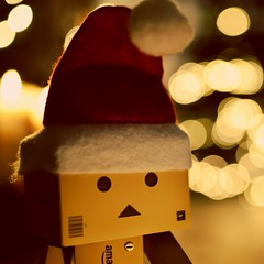 "Merry Christmas  ""Holiday Bokeh"" (D-Rat) Tags: danboard danbo macromondays holidaybokeh merrychristmas christmas bokeh nikon d800 sigma50mmmacro froheweihnachten weihnachten"