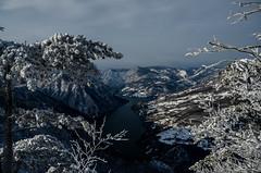 8SC_9503 (viki.dilova) Tags: winter viewpoint tara mountain banjskastena nature snow frost cold lake serbia srbija nikond7000