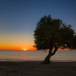 El Taray y el Mar thumbnail