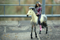 shania on horseback (photos4dreams) Tags: barbie toy doll dress kleid kleidung photos4dreams p4d photos4dreamz mattel spielzeug puppe püppchen fashionistas fashionista canoneos5dmark3 indian nativeamerican shania fjf16 chic apfelschimmelooakp4d p ooak apfelschimmel pferd horse oneofakind dapplegrey gray andalusier barbiehorse andalusianhorse