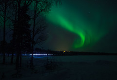 Aurora borealis and passing car (Rezwanul Islam (REZ1)) Tags: rovaniemi lapland finland fi aurora borealis spectacular display night sky green northern lights dark trees snow covered star starry landscape scandinavia chilly winter canon eos 600d beautiful magical artistic truck light stream 2017