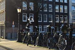 DSC_0656 - Copie (elisa.savio) Tags: amsterdam trip travel voyage landscape bike photographer nikkor nikon