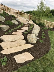 IMG_0508 (Green Oasis Landscapes) Tags: rosetta irregular stairs steps superior steppers ntd area path lights