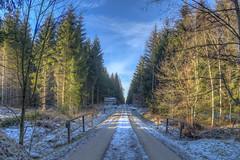 pudergezuckert (wolf238) Tags: weis puderzucker schnee winter frost weg