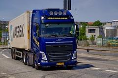 AH79529 (18.05.25, Østhavnsvej, Oliehavnsvej)DSC_8567_Balancer (Lav Ulv) Tags: 248885 volvo volvofh fh4 guldagertransport guldager henrikguldager 2013 e5 euro5 6x2 container maersk østhavnsvej portofaarhus afmeldt2018 retiredin2018 abgemeldet2018 blue fh500 firstclass truck truckphoto truckspotter traffic trafik verkehr cabover street road strasse vej commercialvehicles erhvervskøretøjer danmark denmark dänemark danishhauliers danskefirmaer danskevognmænd vehicle køretøj aarhus lkw lastbil lastvogn camion vehicule coe danemark danimarca lorry autocarra danoise vrachtwagen trækker hauler zugmaschine tractorunit tractor artic articulated semi sattelzug auflieger trailer sattelschlepper vogntog oplegger sættevogn