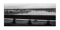 Der Angler an der Elbe (Armin Fuchs) Tags: arminfuchs elbe river fence angler pêcheuràlaligne landscape niftyfifty hff