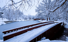 Winter Wonderland (KC Mike Day) Tags: park loose kcmo urban bridge wooden pond frozen tree branches snow inches winter wonderland canon 1635