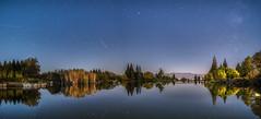 Landscape in the night (nickneykov) Tags: nikon d810 nikond810 irix irix15mm landscape panorama sandanski bulgaria night twilight water trees animal nightsky colorfull plants