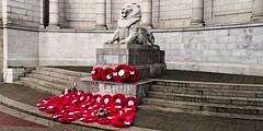 IMG_20181111_114900 (LezFoto) Tags: armisticeday2018 lestweforget 19182018 100years aberdeen scotland unitedkingdom huawei huaweimate10pro mate10pro mobile cellphone cell blala09 huaweiwithleica leicalenses mobilephotography duallens