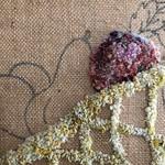 Fruit bowl thumbnail