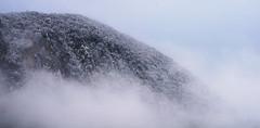DSC00074 (tommaso.rosi) Tags: neve snow colors winter inverno appennino
