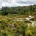 Tarawera fault-line, Te Puia, Rotoura, NZ