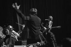 Classic & Roll (Guillermo Relaño) Tags: concierto teatro nuevoapolo nuevomundo dvorak sinfonía nueve novena 9 guillermorelaño nikon d90 cameratamusicalis especial ¿porqueesespecial guitarra guitar rock orchestra orquesta blancoynegro byn blackandwhite bw
