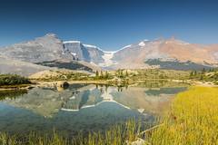 Morning mirror (ulidolz) Tags: canon eos5dmarkiv canada kanada reflection spiegelung rockymountains columbiaicefield jasper alberta mountain berg gletscher glacier lake see