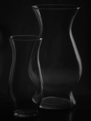 Light Study (klewish) Tags: blackandwhite stilllife glass vase